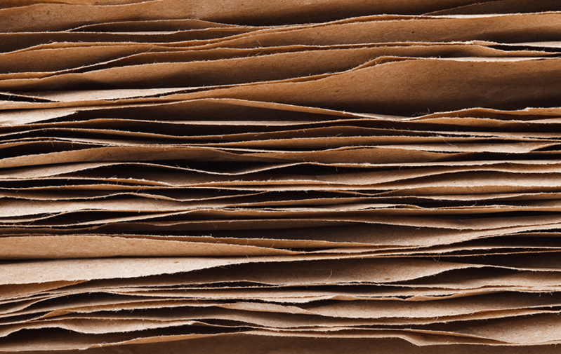 Auditing with Paper Trail