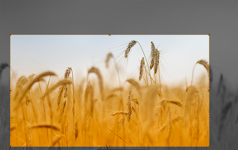 Cropping Images with JCrop